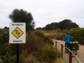 Snake warnings at the 12 Apostles