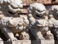 Dragon carvings