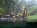Naturally occurring hot water stream