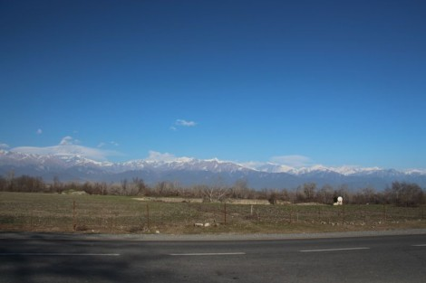 The High Caucasus, our travelling companion