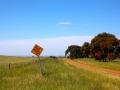 A long hot detour