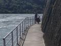 Rhine cycle path